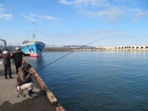 チカ釣り11月