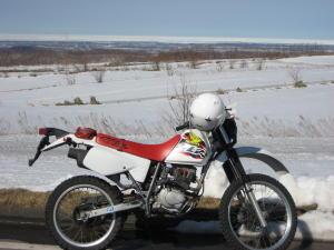 ホンダXLR125
