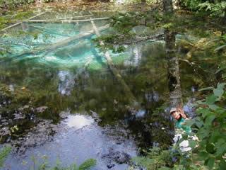 夏の神の子池